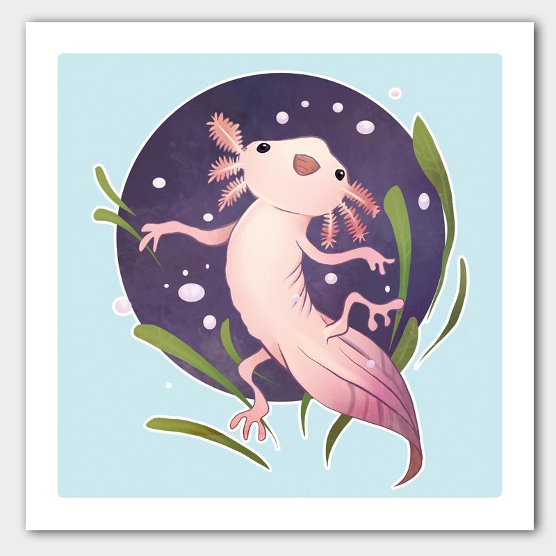 Kunstdruck Axolotl